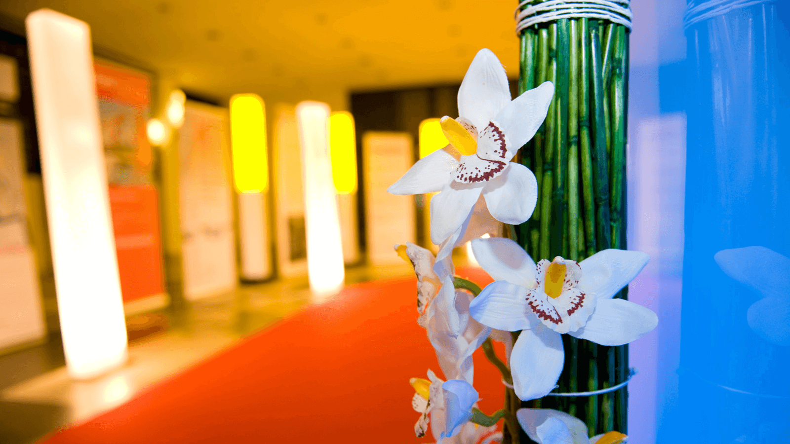 dekoration-vermieten-event-deko-gala-kongress-firmenfest-kundenevent-eventagentur-emotion.company